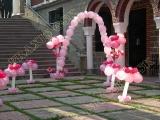 2006-10-dsc-set-baftisis-roz